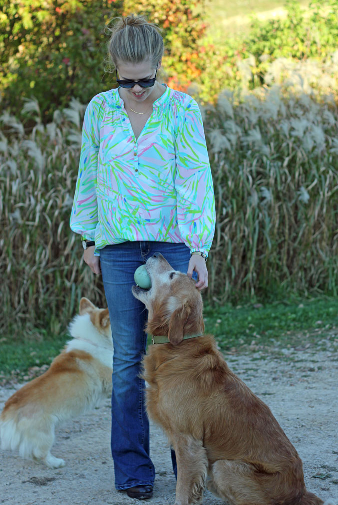 The Flare Jean: Vintage America Blues flare jeans, Lilly Pulitzer Elsa top in Salute