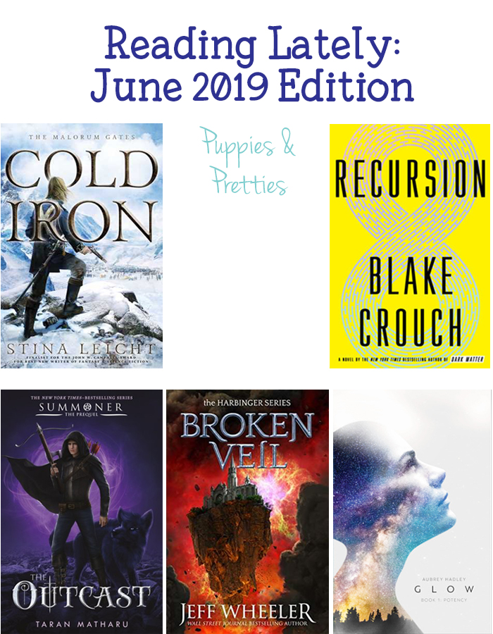 Book reviews of Cold Iron by Stina Leicht; Recursion by Blake Crouch; The Outcast by Taran Matharu; Broken Veil by Jeff Wheeler; Potency by Aubrey Hadley | Puppies & Pretties